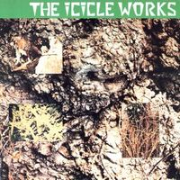 The Icicle Works.jpg